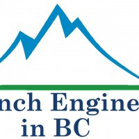 Logo French Engineers in BC Large size